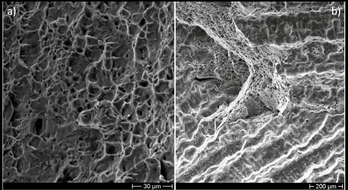 micrografie della superficie di rottura